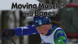 Moving Muscles and Bones