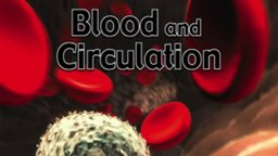 Blood and Circulation